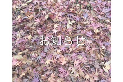 IMG_9190